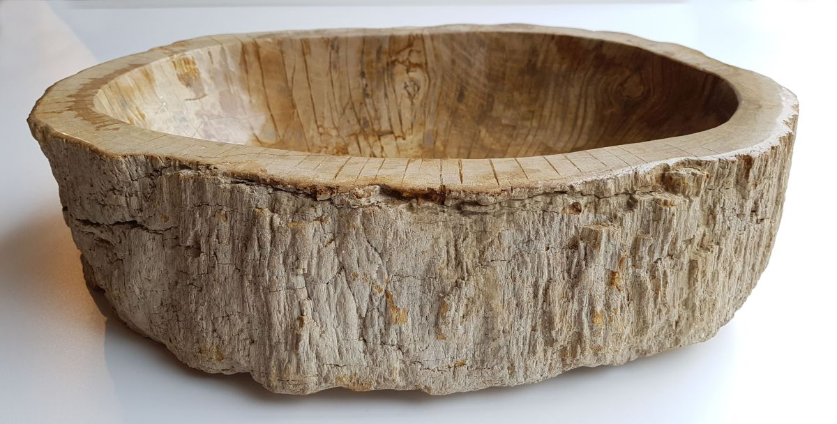 Schale versteinertes Holz 28745