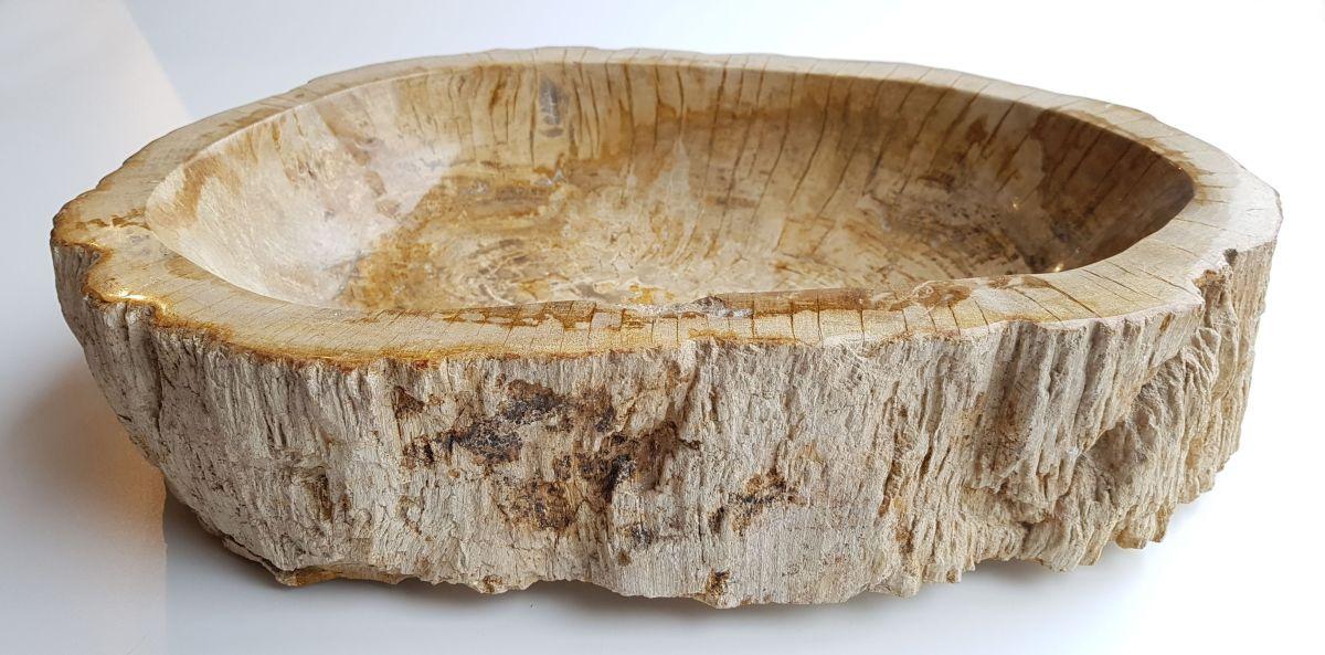 Schale versteinertes Holz 28746