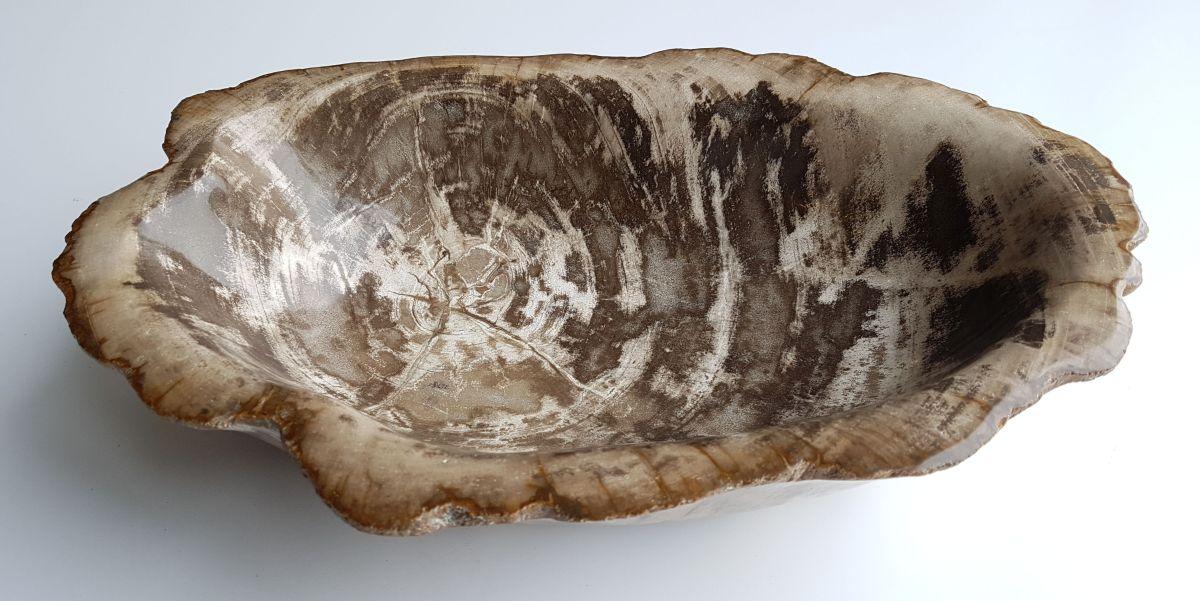Schale versteinertes Holz 32010
