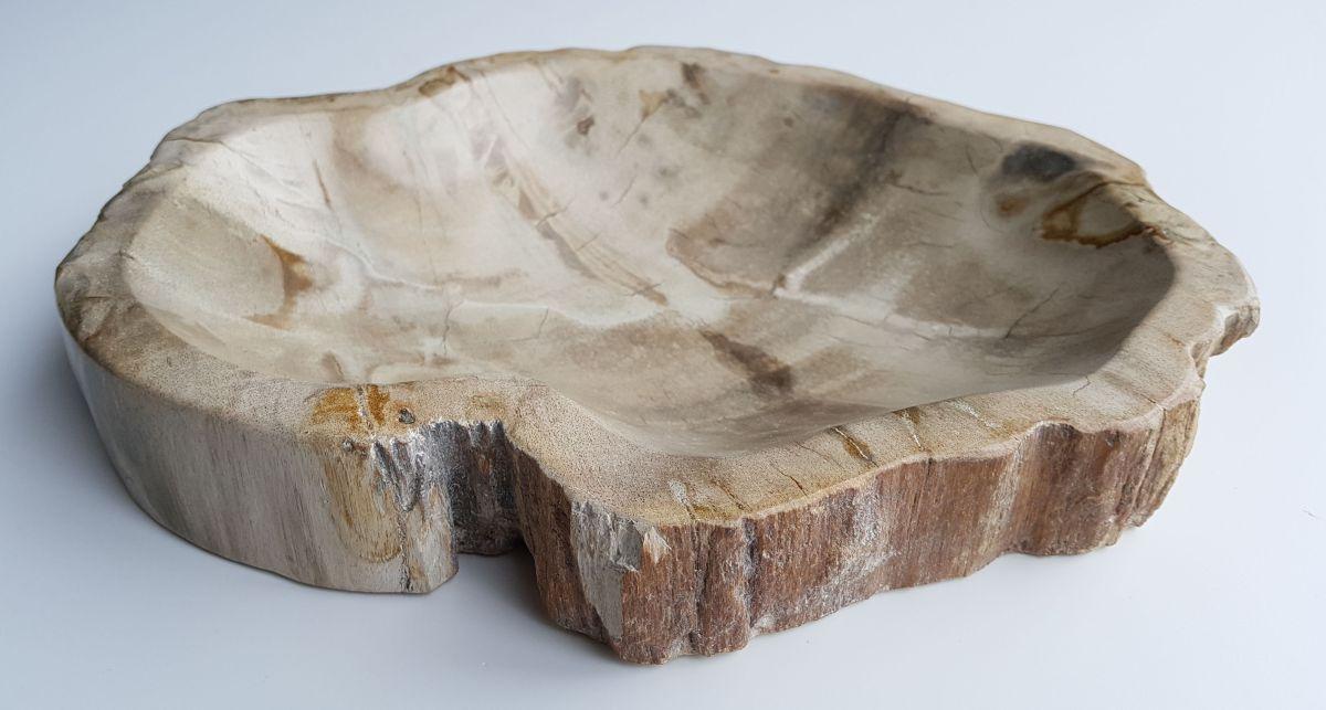 Schale versteinertes Holz 32015