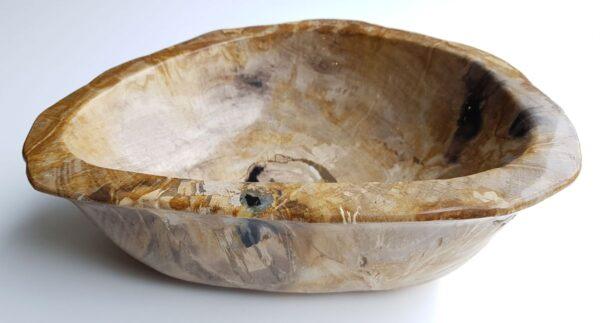 Schale versteinertes Holz 32527