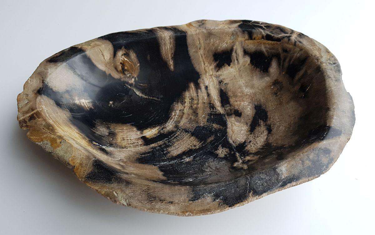 Schale versteinertes Holz 32583