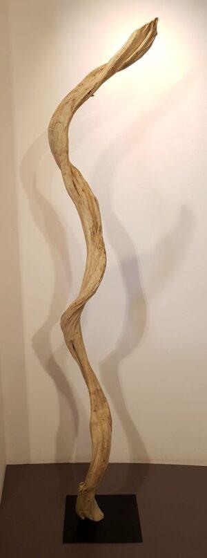 Driftwood 24588A