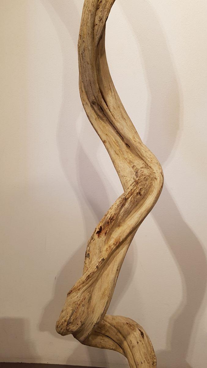 Driftwood 24588C