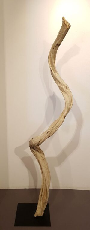 Driftwood 24588D