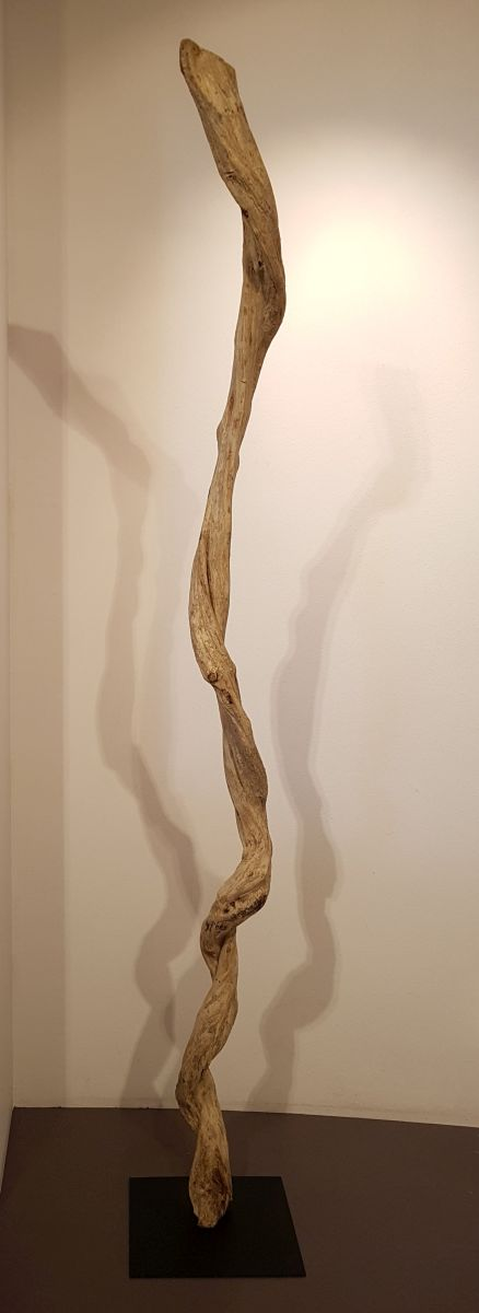 Driftwood 24588E