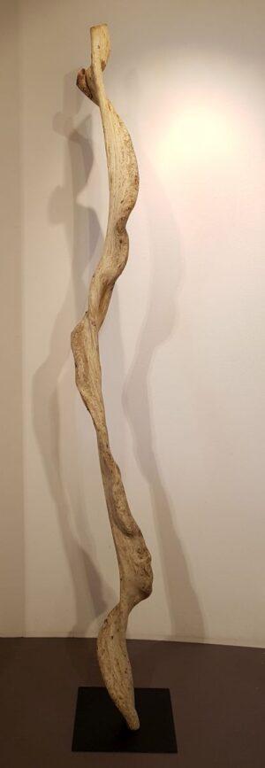 Driftwood 24588F