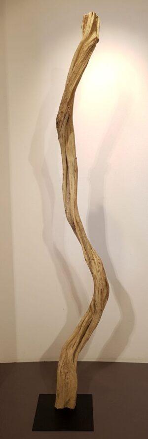 Driftwood 24588G