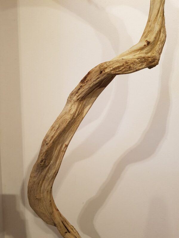 Driftwood 24588H