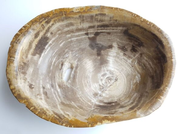 Boule bois pétrifié 33035