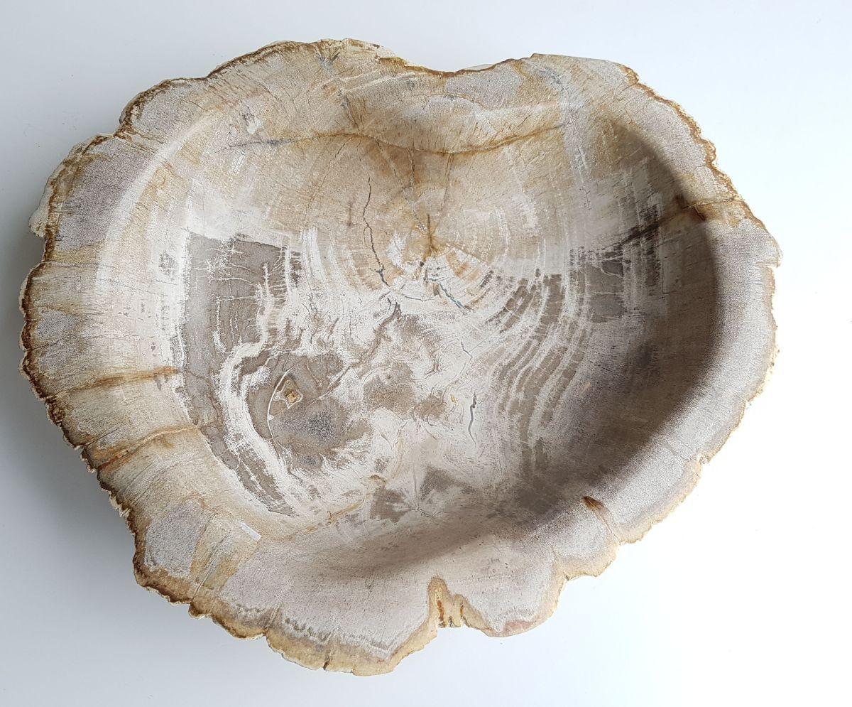 Boule bois pétrifié 33068