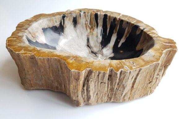 Boule bois pétrifié 33069