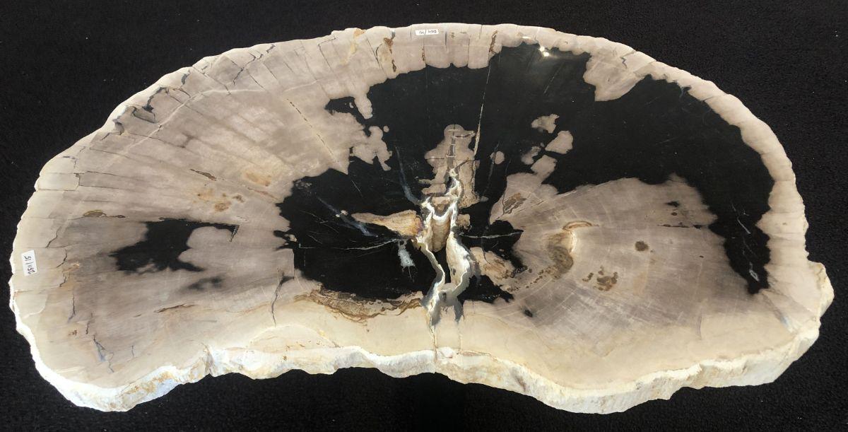 Coffee table petrified wood 33167
