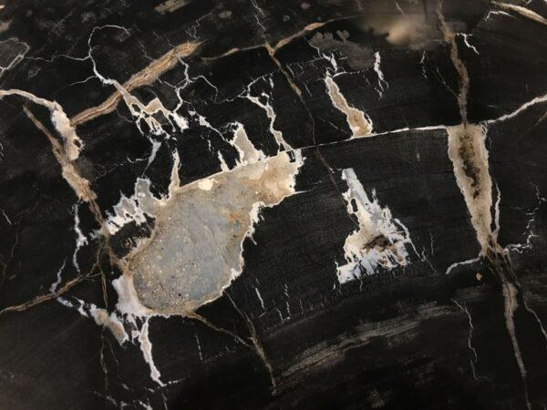 Coffee table petrified wood 33209
