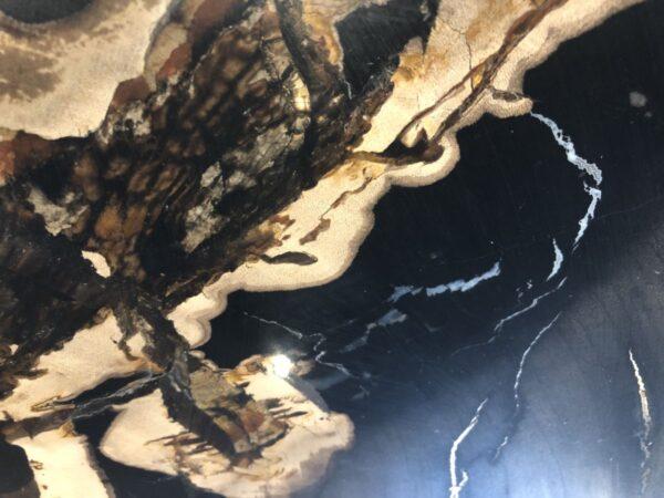 Coffee table petrified wood 33223