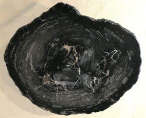 Coffee table petrified wood 33227