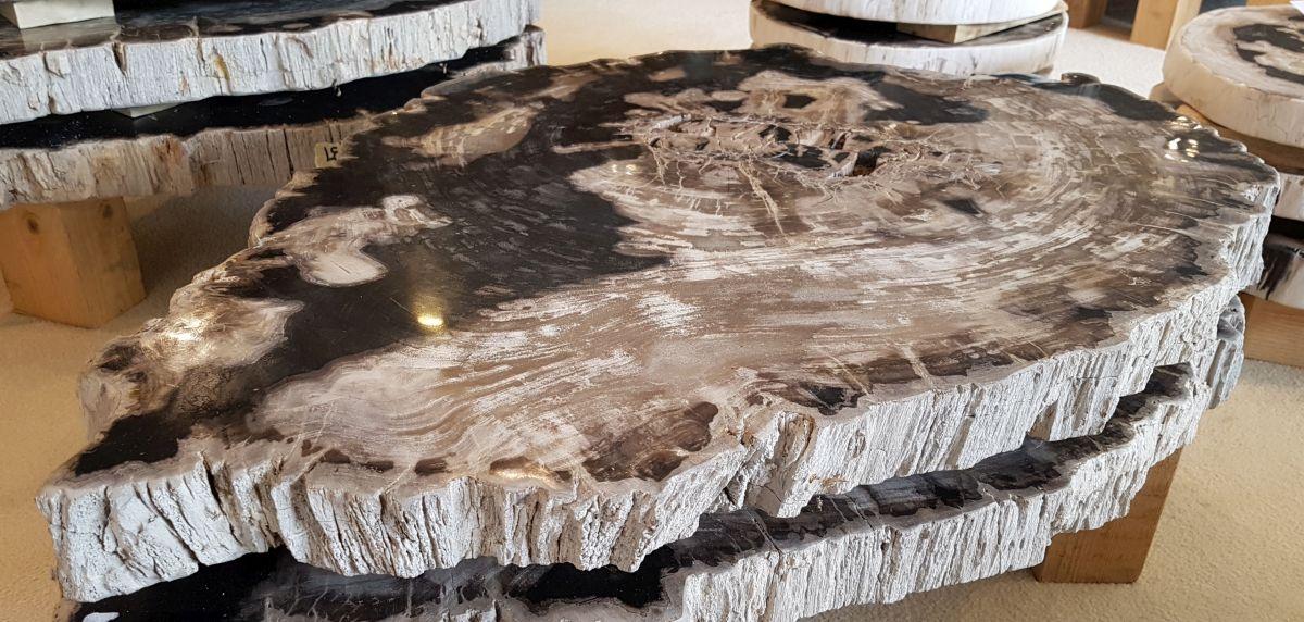 Couchtisch versteinertes Holz 32237