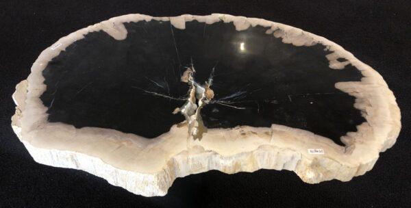 Couchtisch versteinertes Holz 33165