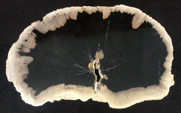 Couchtisch versteinertes Holz 33166