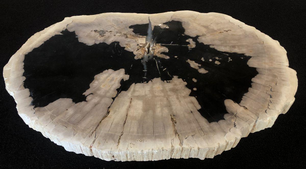 Couchtisch versteinertes Holz 33169