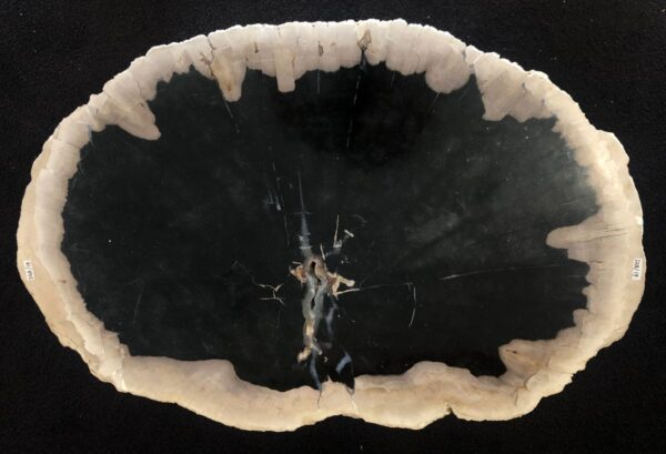 Couchtisch versteinertes Holz 33174