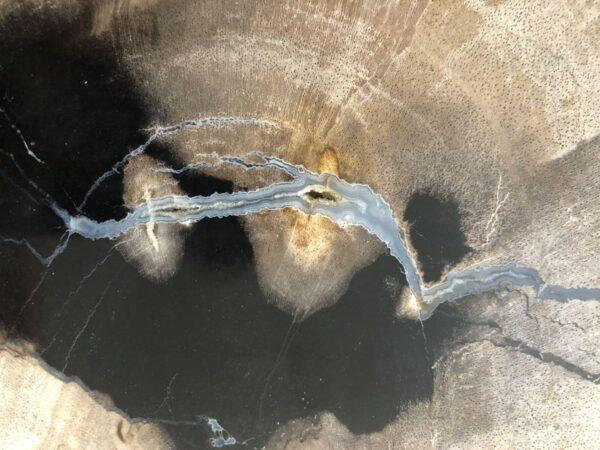 Couchtisch versteinertes Holz 33181