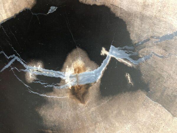 Couchtisch versteinertes Holz 33182