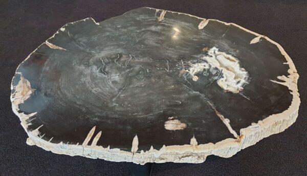 Couchtisch versteinertes Holz 33242