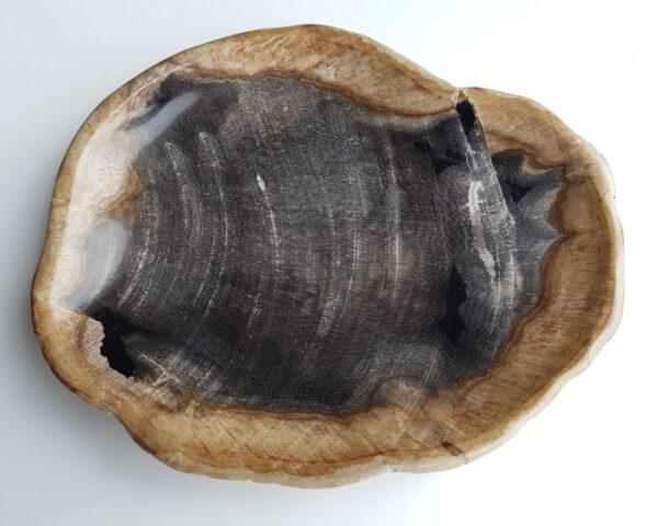 Plato madera petrificada 26119