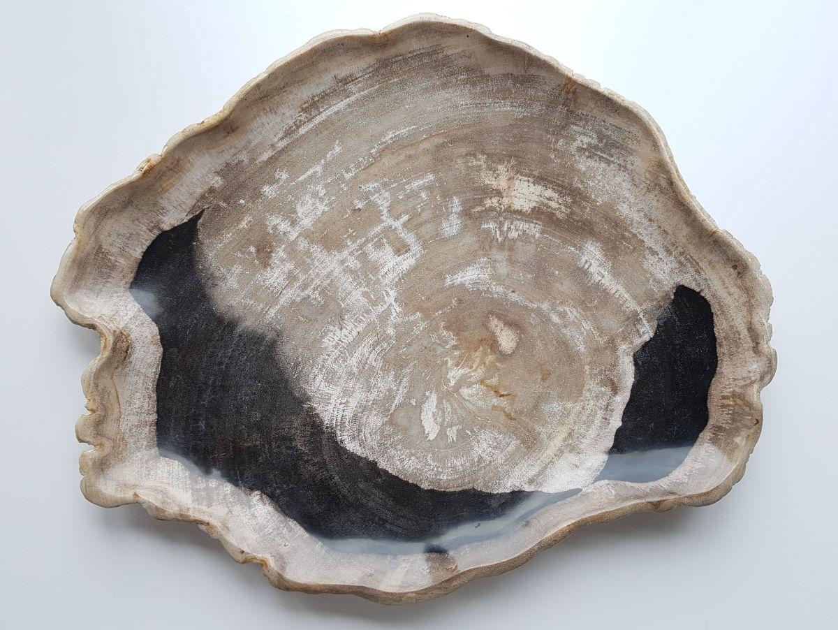 Plato madera petrificada 27826
