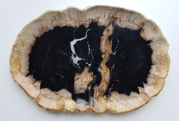 Plato madera petrificada 32044