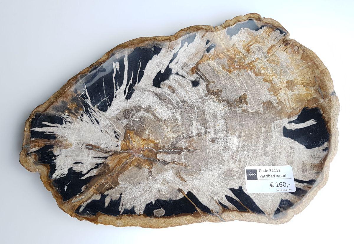 Plato madera petrificada 32112