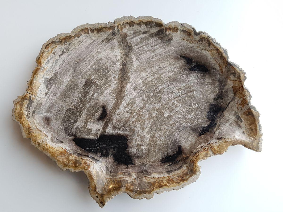 Plato madera petrificada 33003a