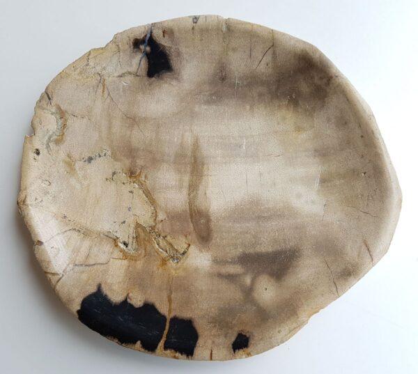 Plato madera petrificada 33004i