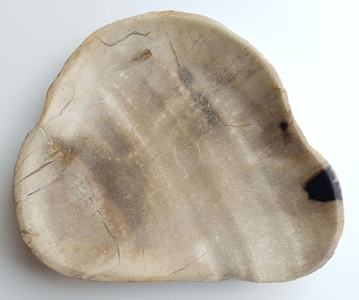 Plato madera petrificada 33004k