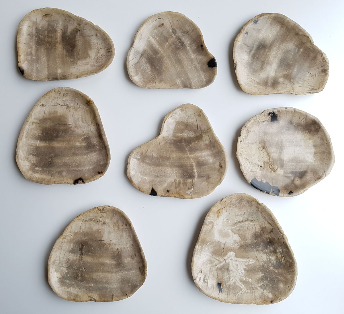Plato madera petrificada 33004l
