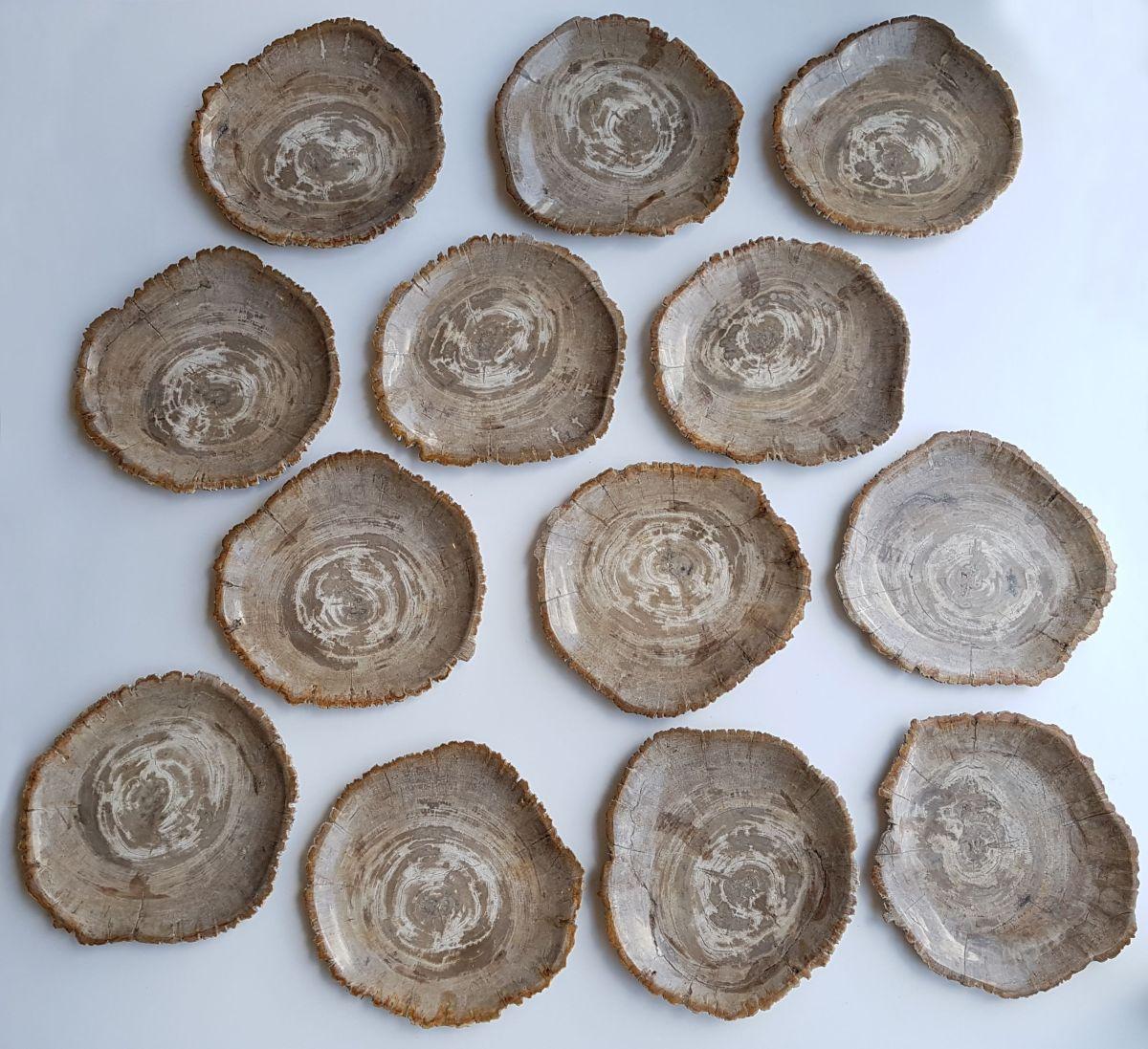 Plato madera petrificada 33007b