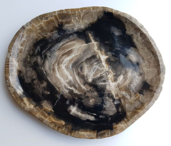 Plato madera petrificada 33009b