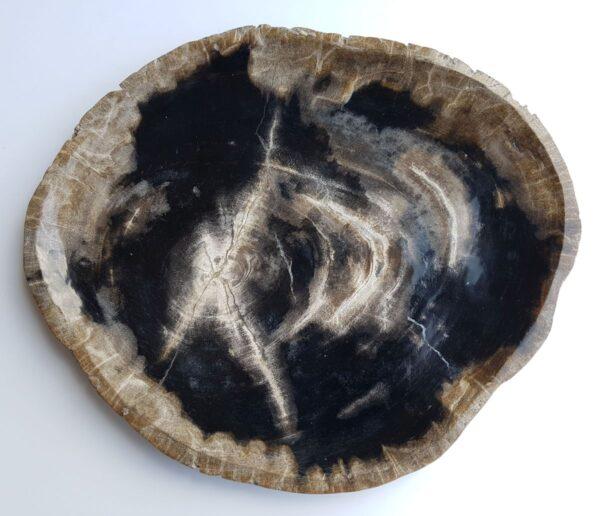 Plato madera petrificada 33009e