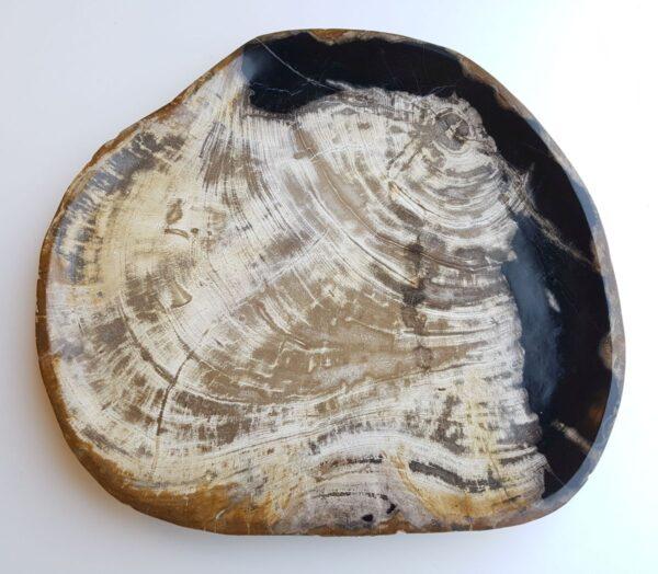 Plato madera petrificada 33010a