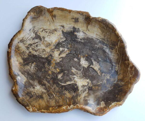 Plato madera petrificada 33017d