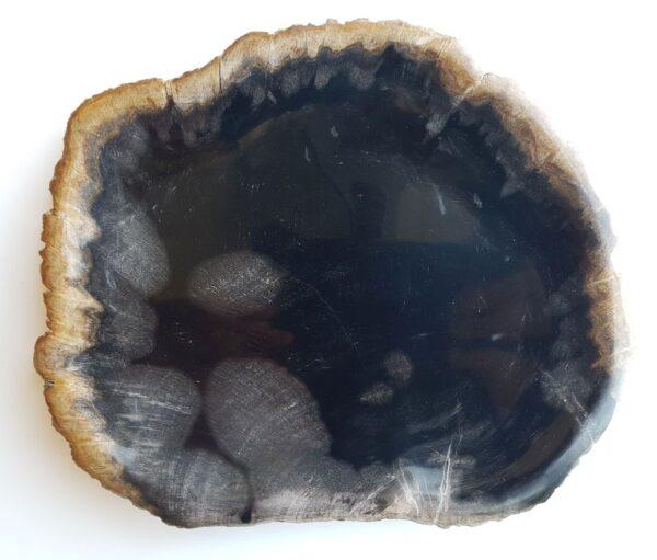 Plato madera petrificada 33018e