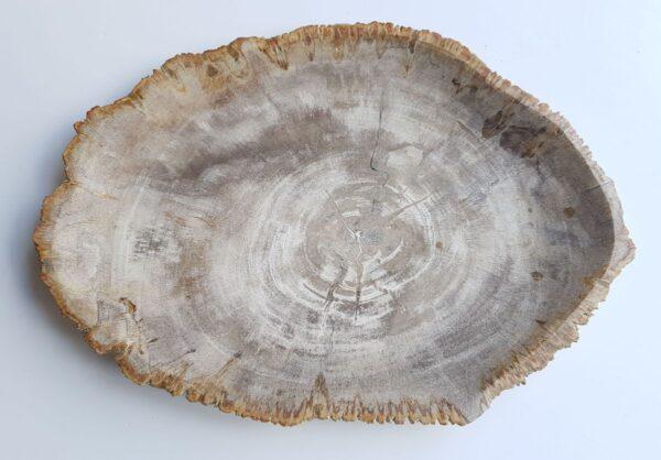 Plato madera petrificada 33033h