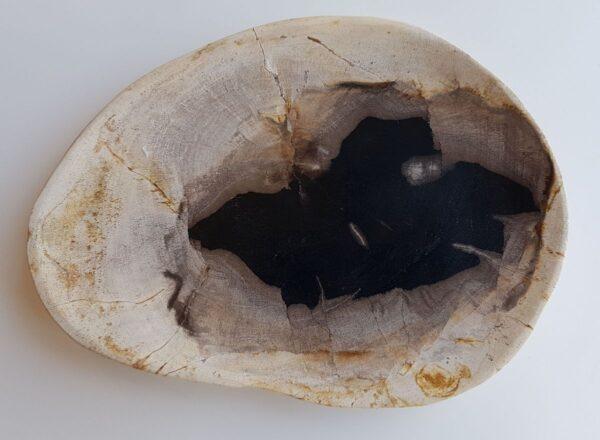 Plato madera petrificada 33045b