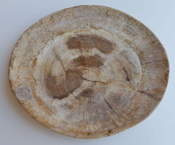 Plato madera petrificada 33046c