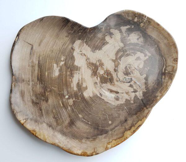 Plato madera petrificada 33048i