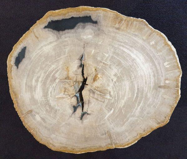 Mesa de centro madera petrificada 33090