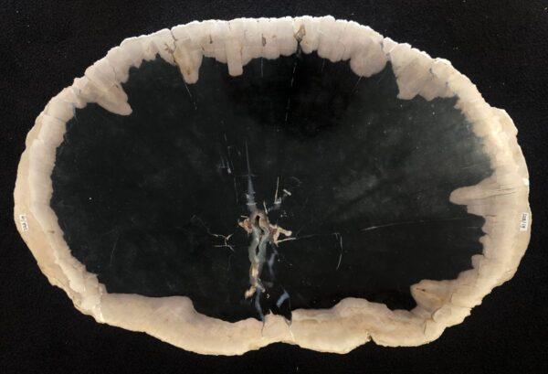 Mesa de centro madera petrificada 33174