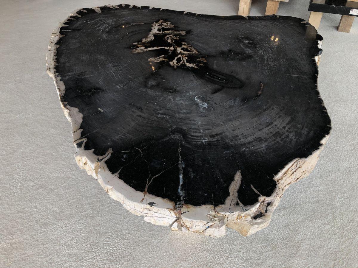 Mesa de centro madera petrificada 33221