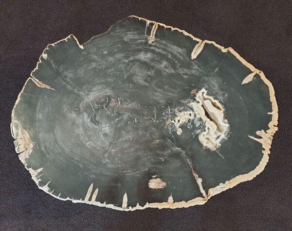 Mesa de centro madera petrificada 33242